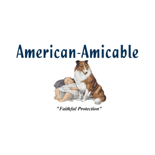 American Amicable: Life Insurance - Quotes, Reviews