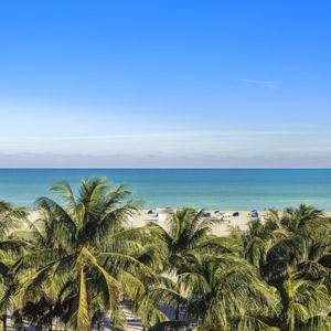 {'name': 'Florida', 'quote': 65, 'img': 'florida.jpg', 'slug': 'florida'} car insurance options